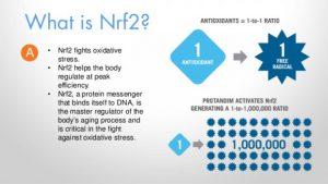 Nrf2 activation
